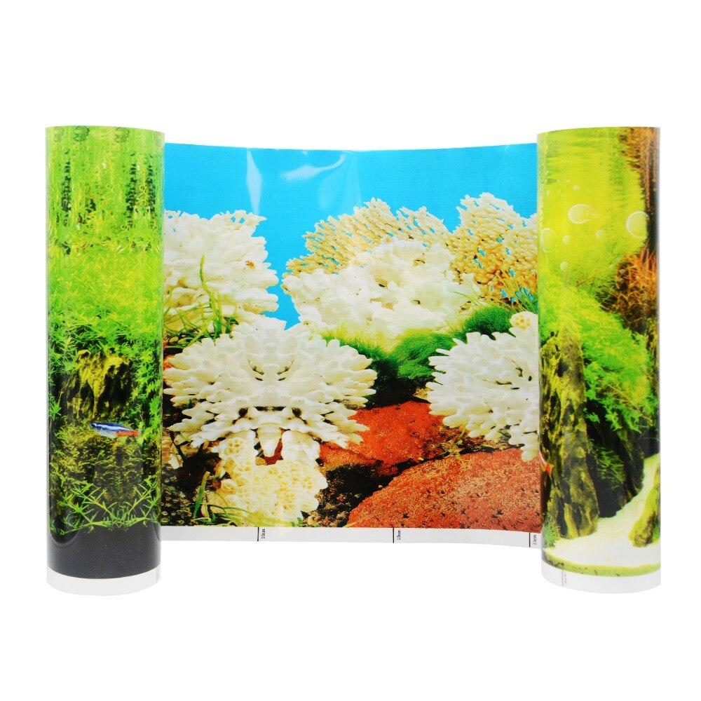 Animal Wallpaper: Tropical Fish Wallpapers Picture Beautiful ...