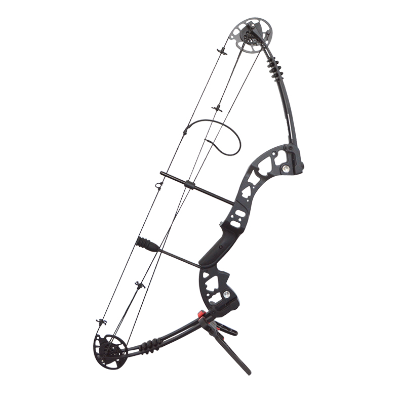 1set 30 55lbs Archery Compound Bow 38inch IBO 310FPS Pulley Bow Adjustable 70 Labor Saving Ratio Shooting Training Hunting Bow in Bow Arrow from Sports Entertainment