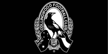 Collingwood Magpies Flag 150X90CM AFL 3X5FT Banner 100D Polyester grommets custom009, free shipping