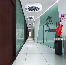 LED  PIR lamp, ceiling light control light, corridor, garage, induction lamp