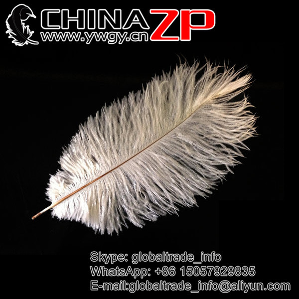 CHINAZP Factory Size 30-35cm(12-14inch) Dyed Multi Colors Fantastic DIY Decoration Ostrich Feathers
