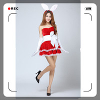 Wholesale Christmas Dress For Women Sexy Santa Costumes For Women