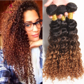 Ombre Wet And Wavy Human Hair 3pcs/Lot 8a Grade Virgin Human Deep Curly Hair,7A Ombre Human Hair Extensions Tissage Bresilienne