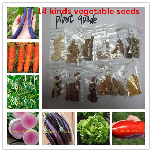 14 kinds 1600+ vegetable seeds ,NO-GMO seed vegetables include chili tomato etc home garden plant ...
