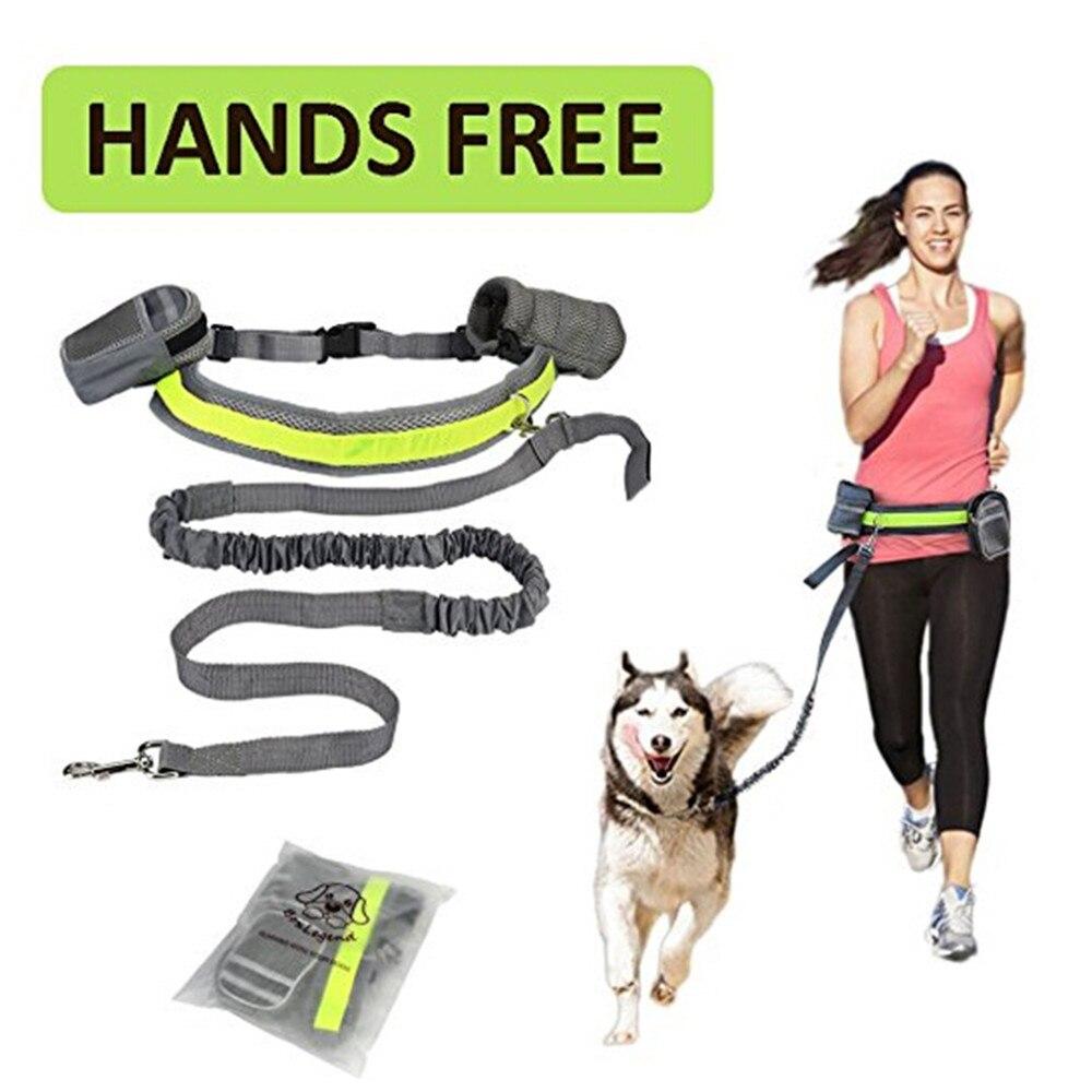 Laisse pour courir avec son chien running dog