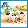 3 pcs Contracted Creative Mini Teeth Flower Pots Planters Ceramic White Hydroponics Garden Pot teeth Herb plants Dental gift