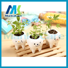 3 pcs Contracted Creative Mini Teeth Flower Pots Planters Ceramic White Hydroponics Garden Pot teeth Herb plants Dental gift