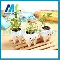 3 pcs Criativo Contratado Dentes Mini Hidroponia Jardim Vasos de Flores Plantadores De Cerâmica Branca Vaso de plantas Herbáceas de dentes Dental presente