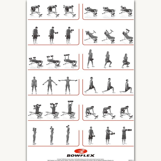 Fx1051 Hot Dumbbell Workout Gym Bodybuilding Fitness Chart Home Exercise Poster Art Silk Canvas Room Wall Printing Decor
