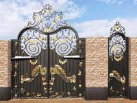 black iron gate driveway security gates small iron gate