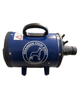 Image 5 - Bs2400 grooming secador para cães baixa noice secador de cão forte potência pet secador stepless velocidade para cães de secagem navio da rússia