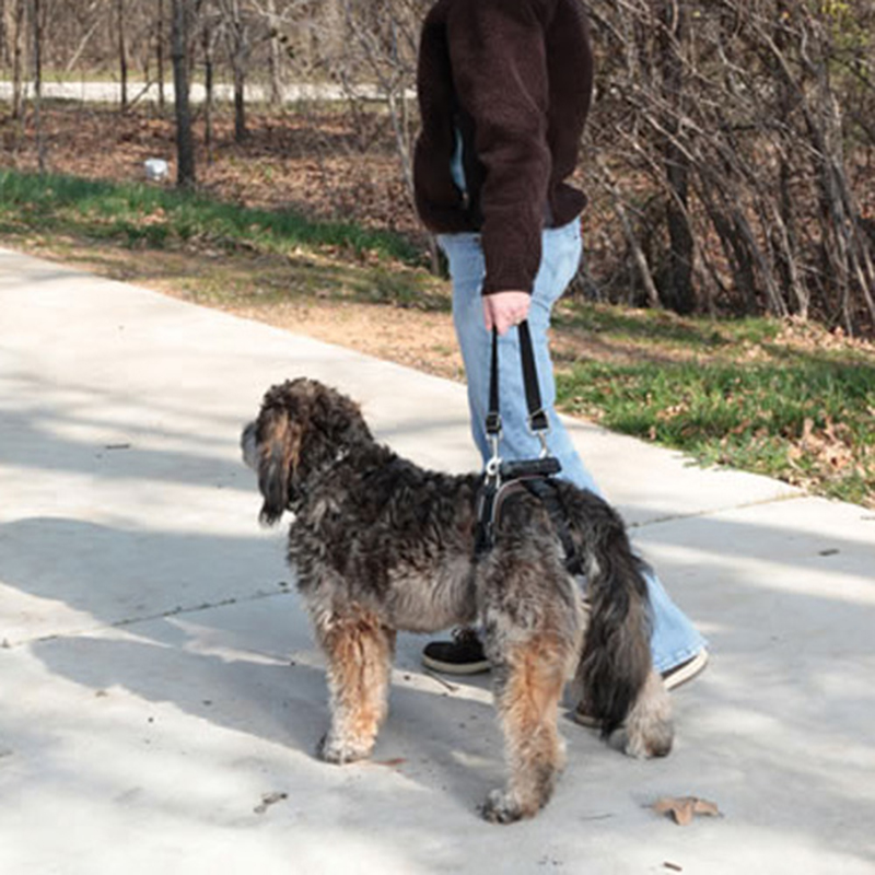 3-59Kg Pet Hebe Hilfe Hund Hinten Teil Harness Älteren Verletzt ...