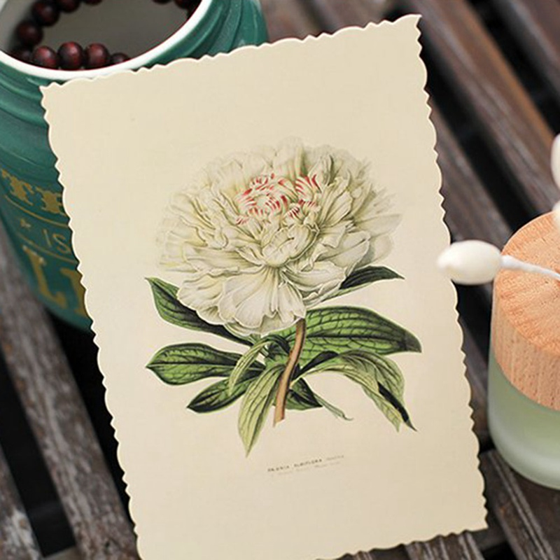 2018 30 Pcs/lot Vintage Herbage Plant Postcard Greeting Card Christmas Card Birthday Card Gift Cards Beautiful(China)