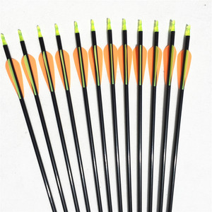 Image 4 - NEW 6/12/24pcs 32 inches  hot sale fiberglass arrows hunting arrow archery  with changeable tips