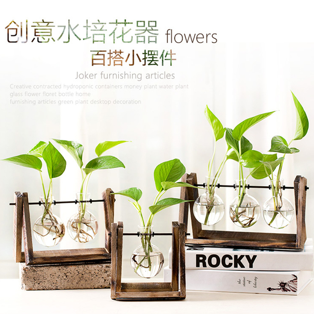 creative water culture green radish plant transparent glass vase small fresh container living. Black Bedroom Furniture Sets. Home Design Ideas
