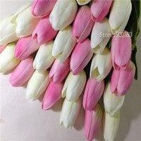 white Pink B