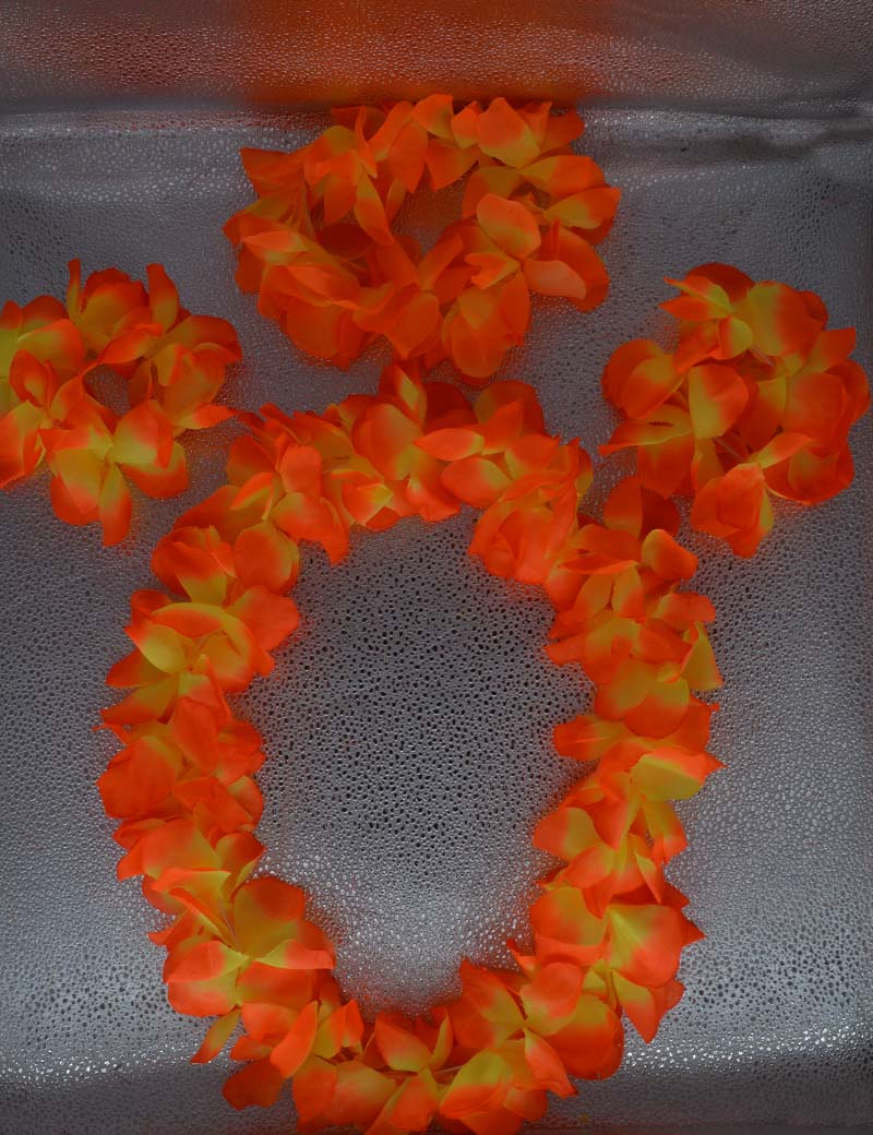 Woman Girl Man Hawaiian Flower Lei Luau Wreath Hula Headband Flower