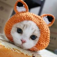 4f010083 Pet hat little sheep Cat hat Headwear Cat Headwear Headgear Small ...