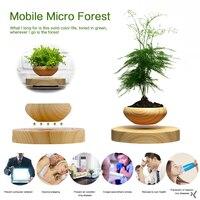 Bonsai Plant Box Garden Gifts ABS 14*6*6cm Durable Unique