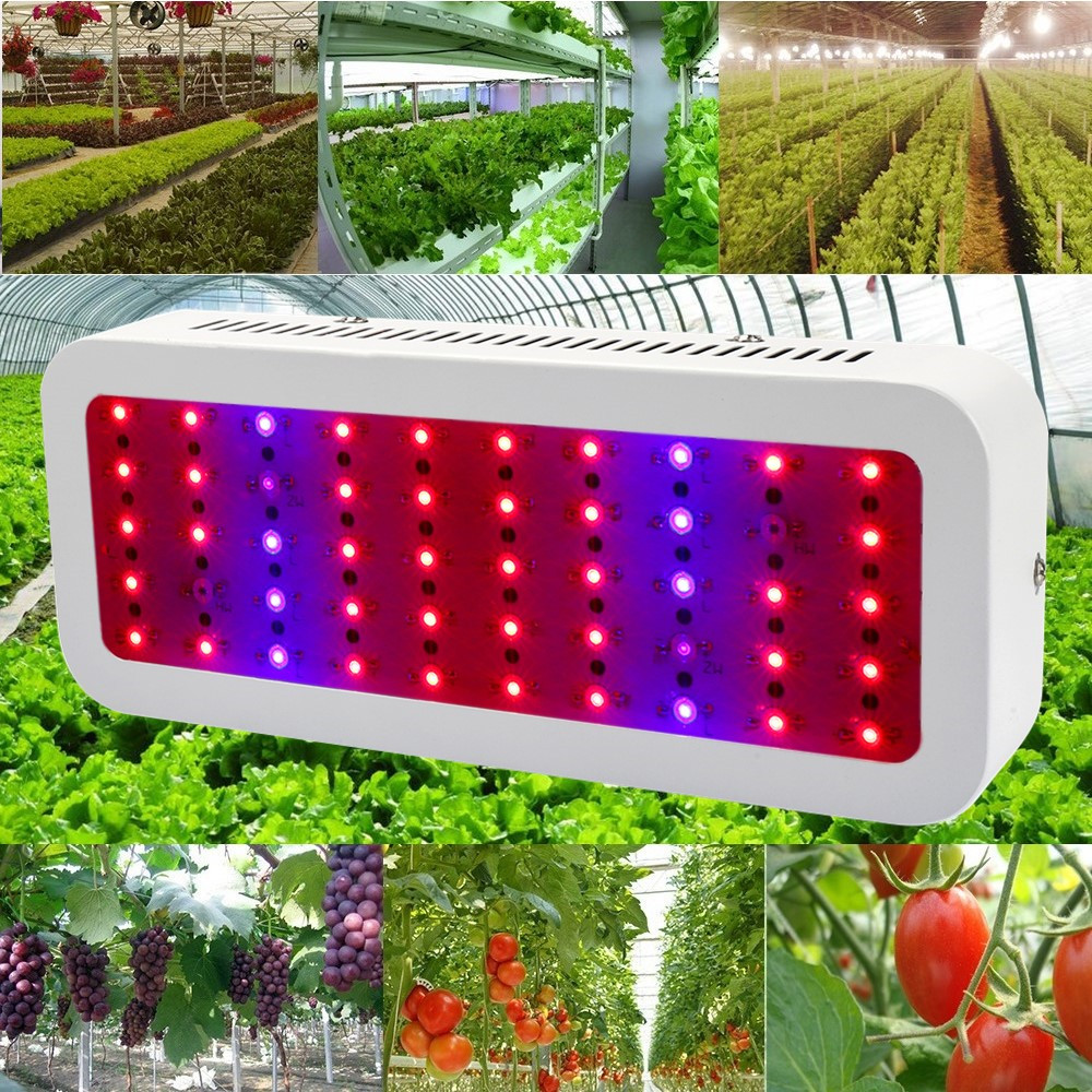 Full Spectrum 300W Led Grow Light Red/Blue/UV/IR Plant Lamp for Indoor Hydroponics Greenhouse Plants All Growth Stage