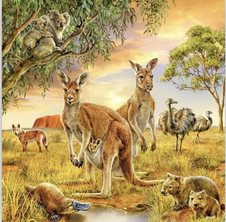 5d Diy Diamond Painting Cross Stitch kangaroo Embroidery animal Crystal round Mosaic Pictures Needlework decor in Diamond Painting Cross Stitch from Home Garden