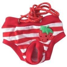 Female font b Pet b font Dog Physiological Menstrual Hygiene Pants Soft Pure Cotton Summer Shorts
