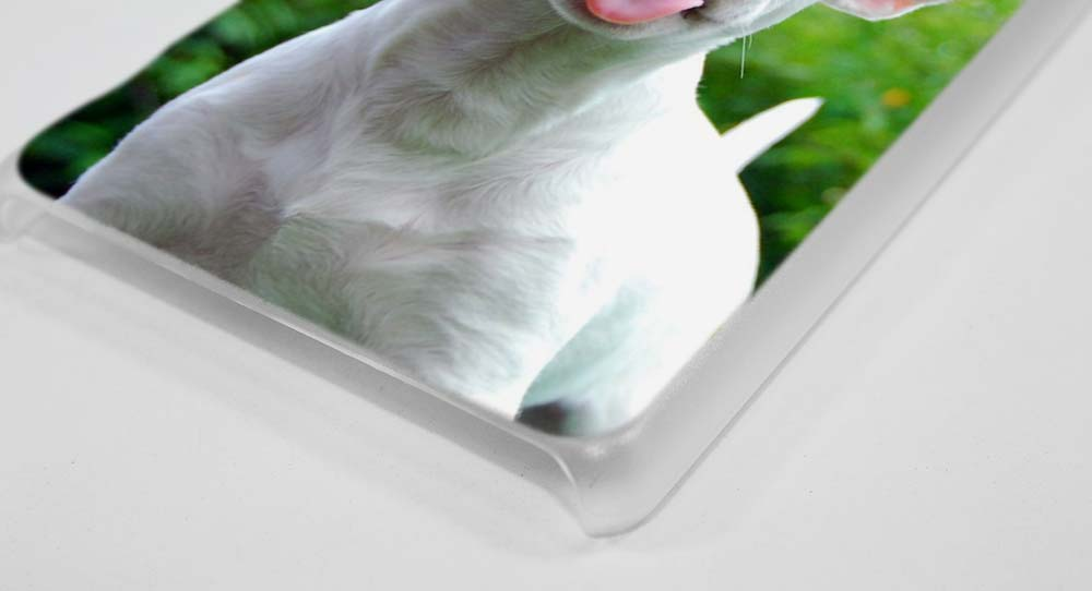 BINYEAE bullterrier bull terrier Hard Clear Case Cover for Sony Xperia XA XA1 X M4 Aqua M5 E4 E5 Z5 Z3 Z2 Z1