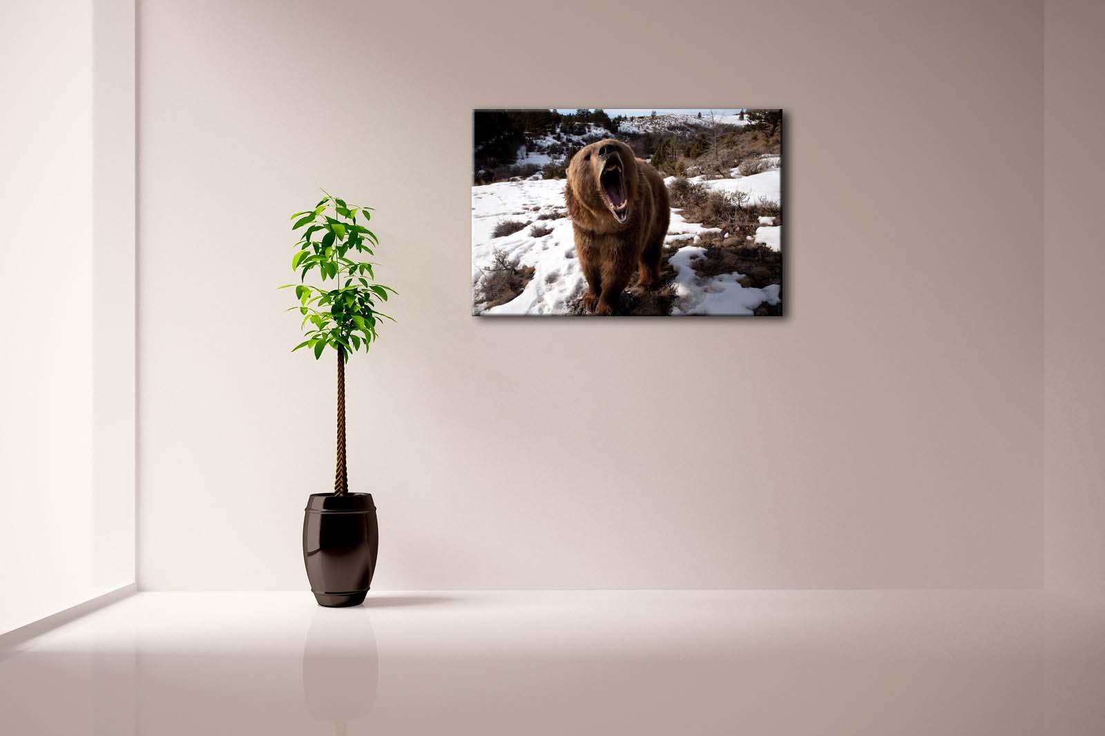 Encadrée mur Art photos ours Snowfield herbe arbre toile impression Animal moderne affiches avec cadres en bois pour salon - 3