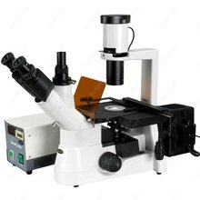 Phase Contrast-AmScope Supplies 40x-800x Plan Phase Contrast Culture Inverted Fluorescent Microscope SKU: IN300TB-FL