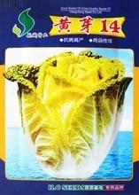 Бесплатная доставка сад китайская капуста семена овощей 15 г/пакет желтый бутон 14 желтый ростки главная и сад семена семена растений
