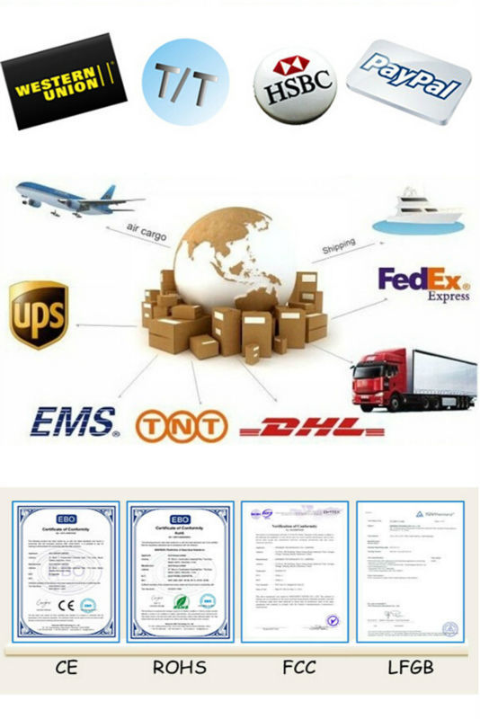 Payment and Delivery and CE
