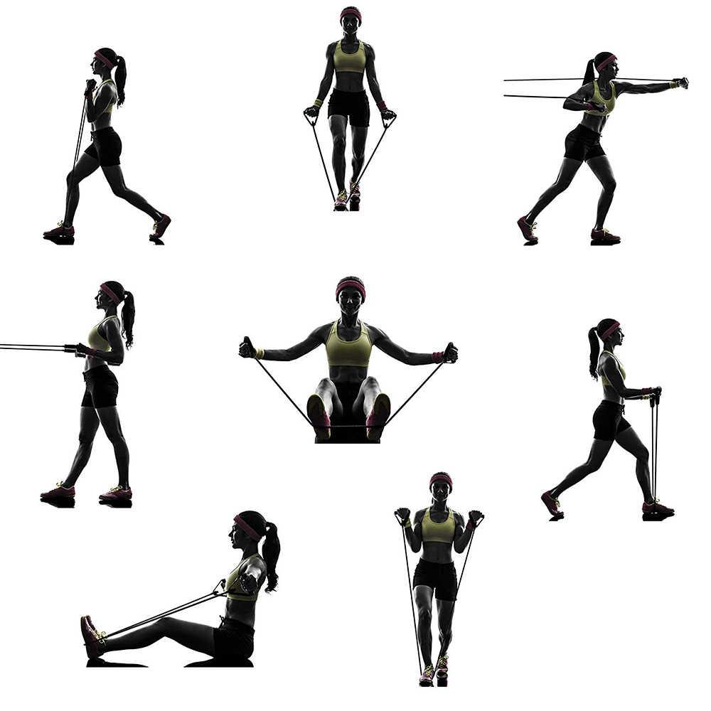 Картинки упражнения с резиновым жгутом для самки-альбиносы
