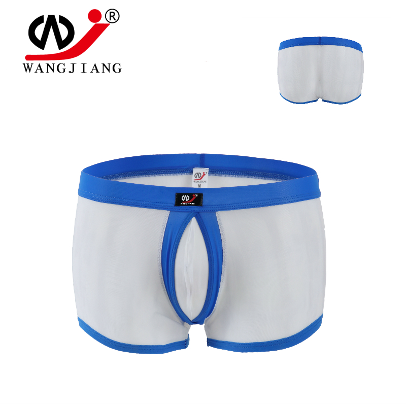 Men's Underwear Elastic Nylon Mesh Transparent Ring Convex Pants  U Outsourcing WJ 1003PJ