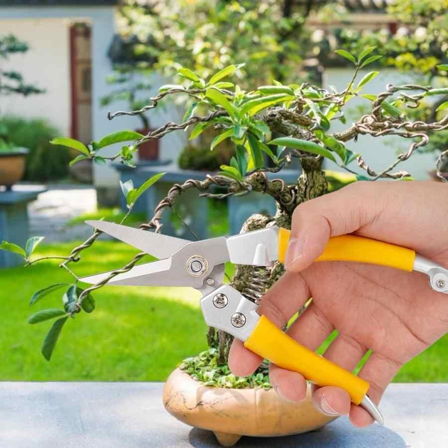 Outil multifonctionnel de ciseaux de coupe d'arbre de fleur de jardin de cisaillement d'élagage