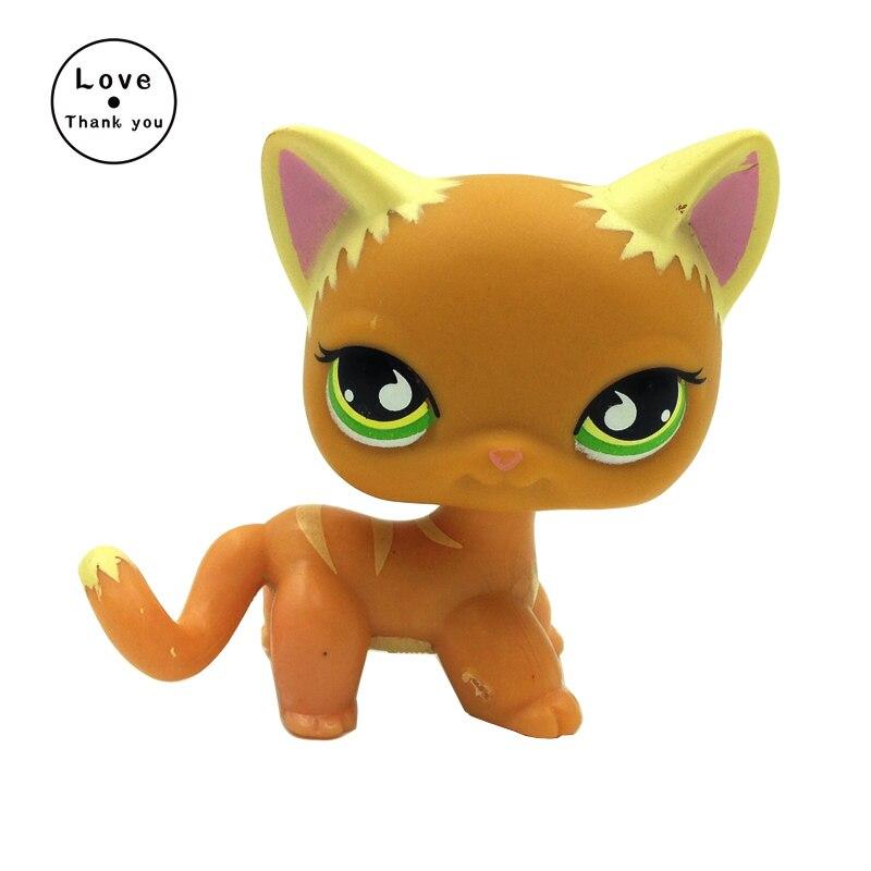 pet shop toys short hair kitty #525 brown kitten green eyes animal toys genuine pet shop 577 brown white