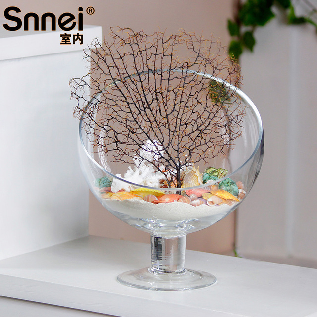 Snnei Indoor Tall Beveled Glass Flower Vase Diy Transparent Modern