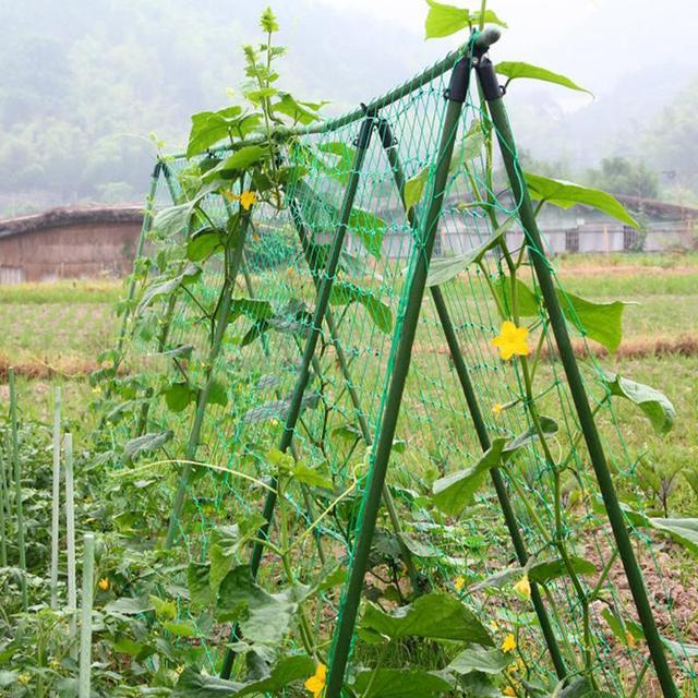 Durable Nylon Trellis Net Support for Climbing Vine Plants Garden Netting Plants Support Trellis Net 1.8×0.9m Garden Tools