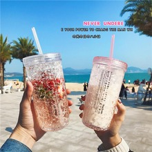 Summer Creative Double Refrigerated Cup with Cover Straw Plastic Cup Japanese Transparent Ice Cup