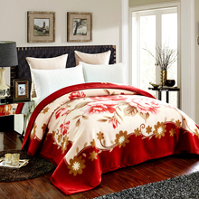 Korean Style Cashmere Raschel Blanket One Layer Floral Printed Soft Warm Plaid Queen Size Winter Warm Bed Sheet Mink Blankets