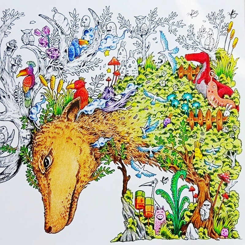 Animorphia Coloring Book For Children Adult An Extreme And Search Challenge Painting Drawing Creative Colouring Books In From Office School