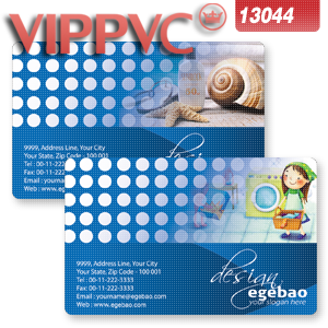 a13044 graphic design business cards Template for Design Printing Double faced pvc card CR80