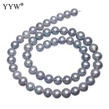Cultured Potato Freshwater Pearl Beads Grey 8-9mm Approx 0.8mm Sold Per 15.7 Inch Strand(China)