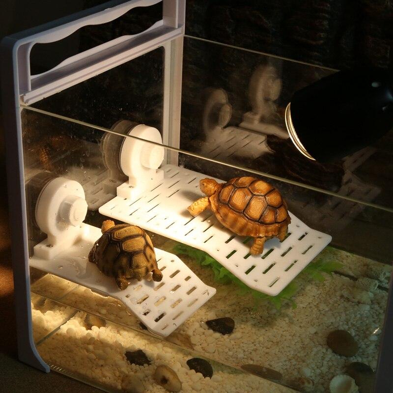 Пластикова черепаха сходження - Продукти для домашніх тварин