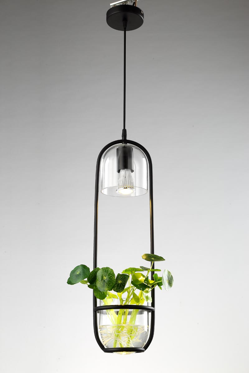 Modern Black Pendant Lights Fixture Glass Lampshade Plant Decor Living Room Kitchen Lamp E27 5W Led Bulb Iron Home Lighting 220V