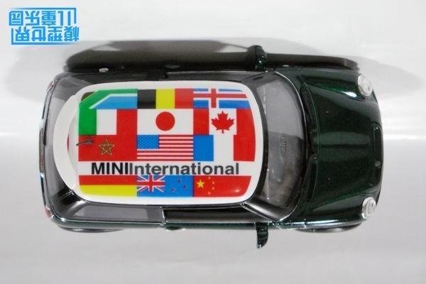 Mini 2 (9)