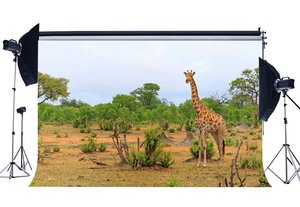 Image 1 - Fondo de zoológico campo Sika Deer Backdrops selva árboles naturaleza primavera fotografía fondo