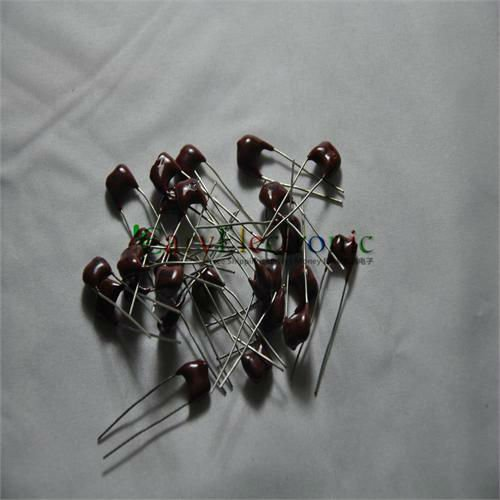 10pcs Silver MICA Capacitor 20pF 500V Radial for guitar amps tone tube audio NEW