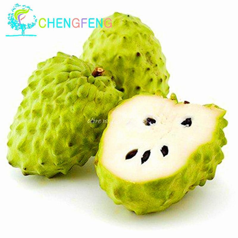 100 Tropical China Seeds Sweetsop Fruit Seeds Custard ...