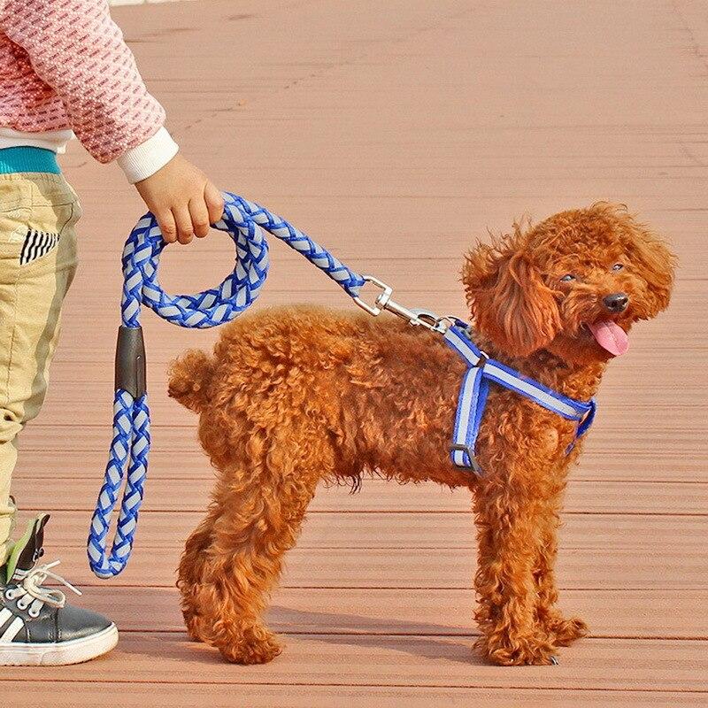 Dureza Ajustable Pet Dog Leash Cuerda Lleva la Formación a Pie al aire libre Pro
