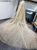 Champagne One Layer Long Bridal Veil with Comb Tulle Beaded Lace Edge Cathedral Wedding Veil with Crystal Wedding Accessories
